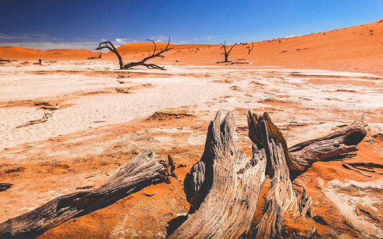 namibia viaggio di gruppo
